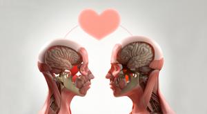 5 важных знаний о любви 2